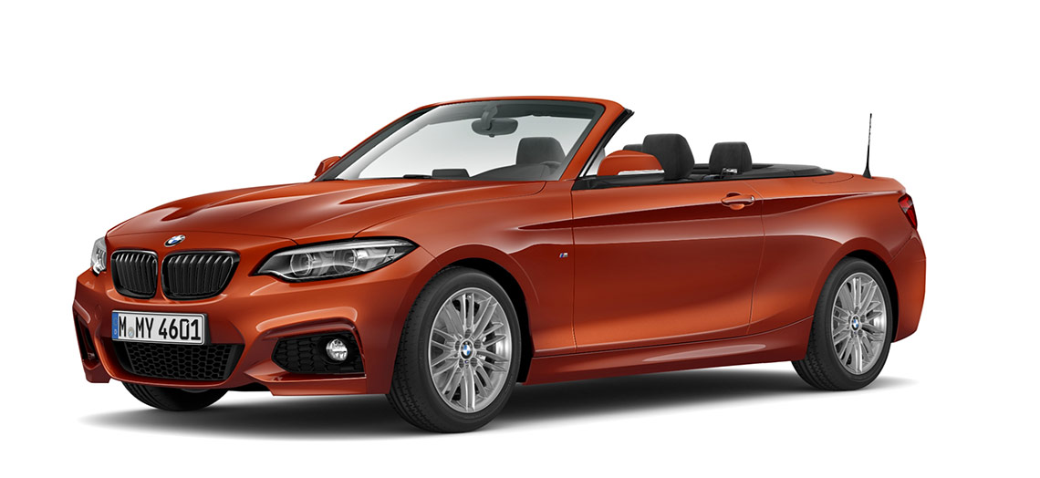 Image of a BMW 2 Series 220 Convertible